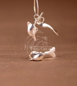 dolphin earrings pin