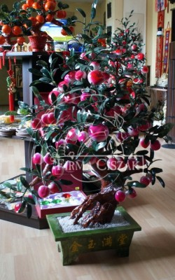 Drzewo Brzoskwiniowe II